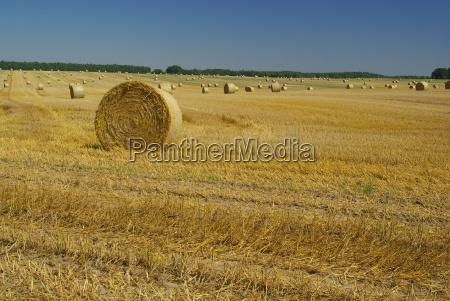 strohballen bale of straw 09