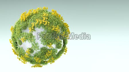 medio ambiente piedra flor planta las