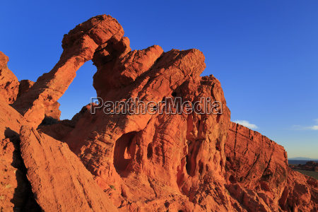 elephant rock valley of fire state